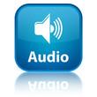"""""""Audio"""" blue button"""