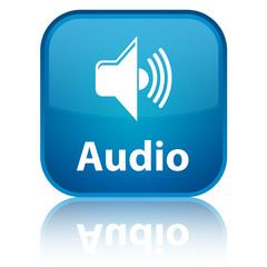 """Audio"" blue button"