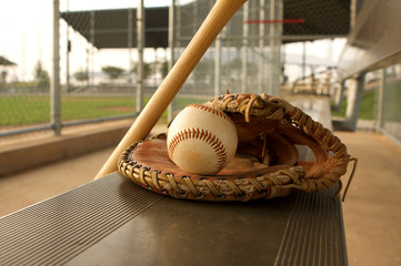 Baseball & Bat on the Bench