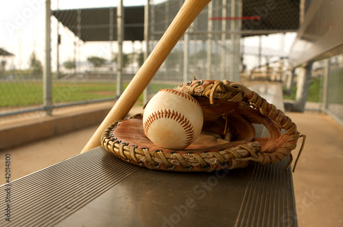 Baseball & Bat on the Bench
