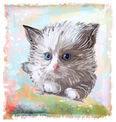 hand drawn portrait of the fluffy kitten  with blue eyes