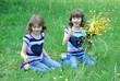 Eineiige Zwillinge pflücken Blumen
