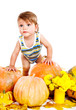Baby among pumpkins