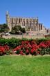 """Rasen, rote Rosen und Kathedrale """"La Seu"""""""