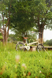 bicycle on green meadow
