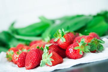 Erdbeeren und Bärlauch II