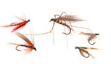 Trout Flies.