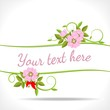 floral banner with wild rose