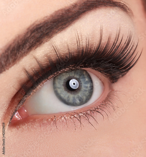 Beautiful Woman's Eye. High quality image