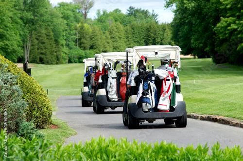 Golf carts - 42031080