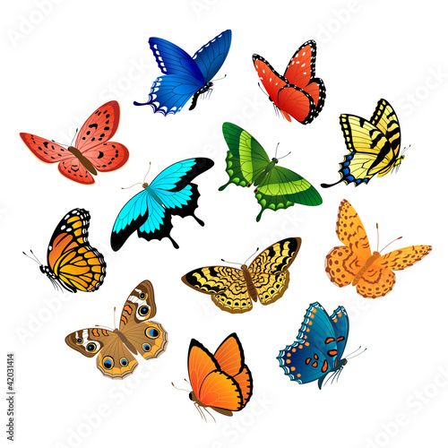 Papiers peints Papillons Flying butterflies