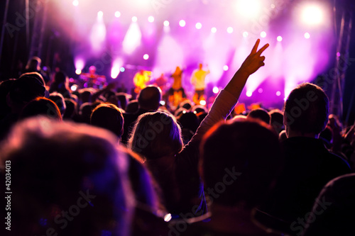People having fun on music concert and/or disco - 42034013
