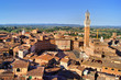 View over medieval Siena, Italy