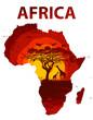 Fototapeten,sonnenuntergang,afrika,natur,silhouette
