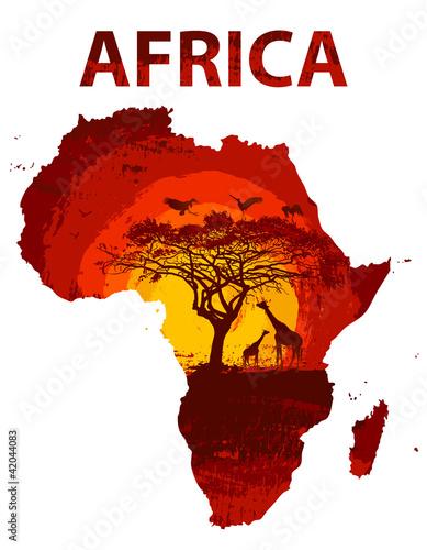 载体野性的野生动物陆地阳光非洲飞溅鸟类黄昏see