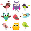 vector set of cute birds