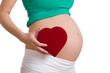 schwangere Frau hält ein Herz in der Hand