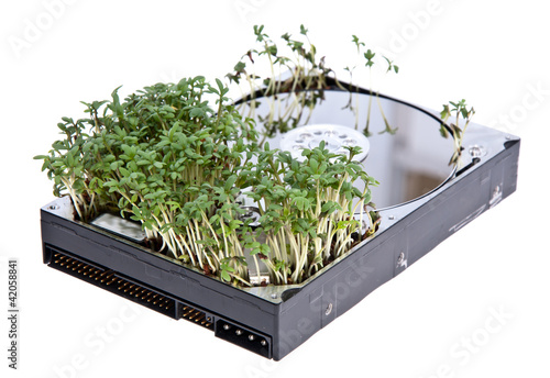 Hard disk drive with Garden Cress