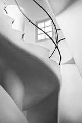 Casa Batllo interior.Stairs to the roof. Antonio Gaudi. BW
