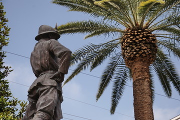 Unknown soldier under a palm