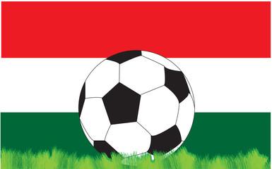 calcio ungheria
