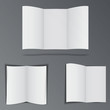 Folded advertisement brochures