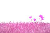 Fototapete Natur - Gras - Blume