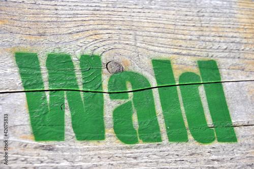 Wald, Wälder, Holz, Nachhaltigkeit, Forst