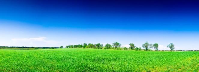 Panorama Prairie Costières