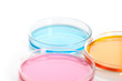 Set of Petri dishes with a colored reagents