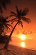 Leinwanddruck Bild - A beach scene with sunset in the background at Maldives island