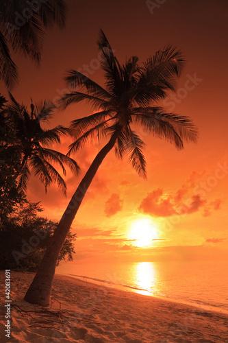 Leinwanddruck Bild A beach scene with sunset in the background at Maldives island