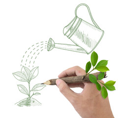 Male hand drawing green plant and watering can.
