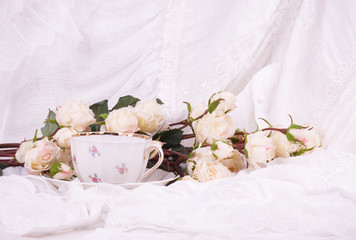 Beautiful tea set with white roses on white background