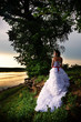 Bride standing at riverside under the tree at sunset
