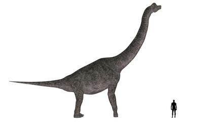 Brachiosaurus Size Comparison