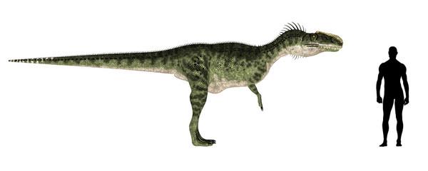 Monolophosaurus Size Comparison