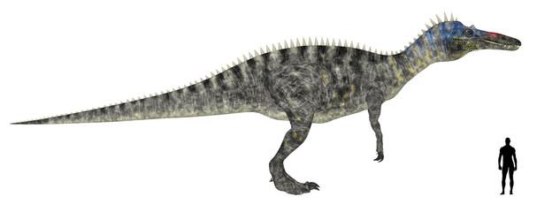 Suchomimus Size Comparison