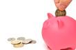 ピンク色の豚の貯金箱