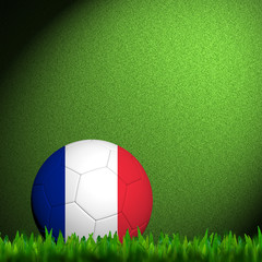 3D Football France Flag Patter in green grass