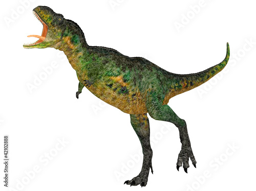 Foto op Plexiglas Draken Aucasaurus