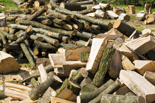 pile of dry chopped firewood