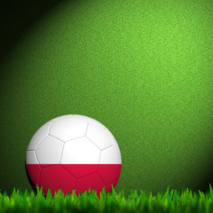 3D Football Poland Flag Patter in green grass