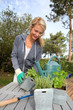 Woman in garden ready to water fresh plants