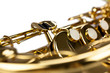 Brass in Focus
