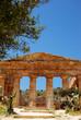 Segesta (Sicilia)  tempio Greco