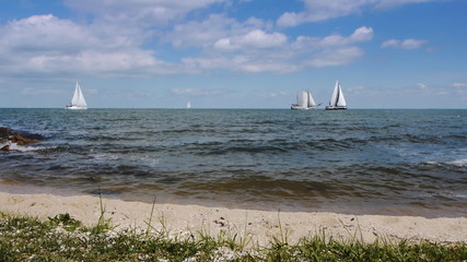Seashore and sailing boats