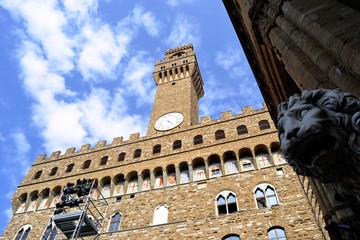 Palazzo Vecchio Firenze Leone