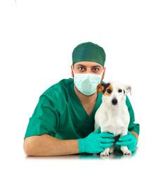 Veterinario chirurgo