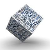 Cross Site Scripting - Würfel / Cube poster